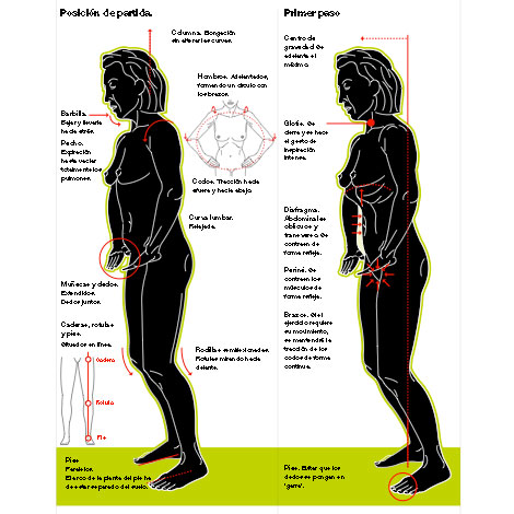 Gimnàstica abdominal hipopressiva